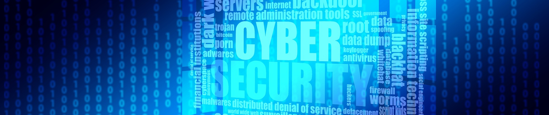 cyber risk banner.png