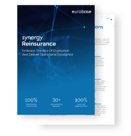 reinsurance-brochure-(front+inner-page-image)
